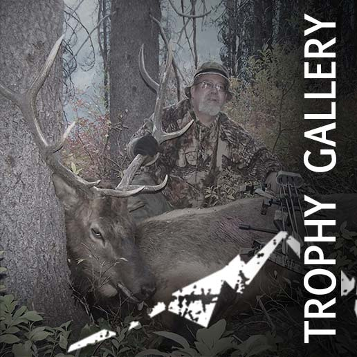 White Mountain Outfitters - Trophy Hunting Photo Gallery
